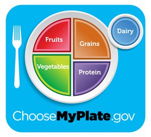 Choose my plate image